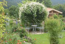 Mein Garten / Pflanzen, Blumen, Sträucher, Stauden Ein Garten füe die Seele