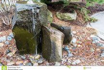 fountains / by Jeni Walker