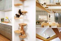 Cat furniture ideas