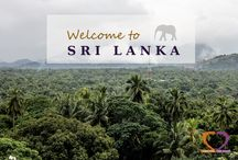 TWO in SRI LANKA / Humble monks, odorless cinnamon, delicious tea, crazy monkeys and many more... see Sri Lanka via our eyes