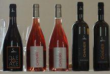 Diegale / I nostri vini