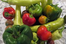 Garden Fresh Veggies