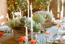 Wedding / by Sara Levitt