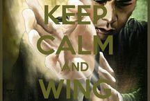 Wing Tsun - Wu De