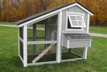Chicken Coops For New House