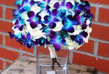 flower ideas / by Jessica Foldhazy