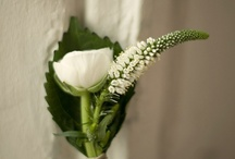 Boutonnieres / Buttonholes & Corsages / Boutonnieres and buttonholes inspiration and ideas for grooms at weddings, and corsages