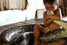 Φωτογραφίες παιδιών με ασυνήθιστα κατοικίδια! / Τα πιτσιρίκια έχουν μία ιδιαίτερη σχέση με τα ζώα...με όλα τα ζώα! Δείτε 14 φωτογραφίες που αποδεικνύουν ότι τα παιδιά δεν βάζουν τίποτα πάνω από τους μικρούς τους φίλους.