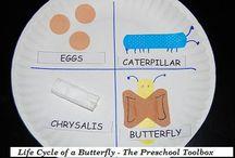 Homeschool {science}