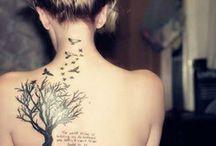 strom stastia