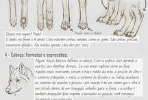 Art: anatomy animals