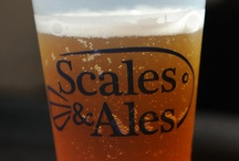 Scales & Ales / Join us for the 5th Annual Scales & Ales to support Audubon Aquarium of the Americas' conservation efforts and education programs. Partygoers will enjoy Bites and Brews including: Abita Beer, wine, specialty cocktails, and delicious cuisine from more than 30 local restaurants.   Friday, September 12, 2014  7:00pm — VIP Early Access 8:00pm - 11:00pm — General Admittance http://www.auduboninstitute.org/scales-and-ales / by Audubon Nature Institute