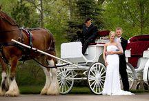 Cragun's Weddings