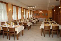Restaurant / V hotelovej reštaurácii ponúkame jedlá z regionálnej,slovenskej a stredoeurópskej kuchyne,posedenie v príjemnom a konfortne vybavenom prostredí obklopenom prírodou.Súčasťou reštaurácie je aj štýlová kaviareň,letná terasa a dva saóniky..