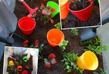 Growth Topic Eyfs