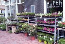 amsterdamse tuinwinkels