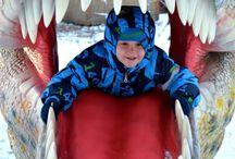 Парк динозавров Ставрополь