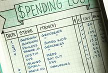 budgeting/organisation