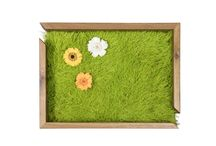 Meadow Line / Handmade furniture with real stabilized meadow and recycled wood. IDeal for home, hotels and business spaces.