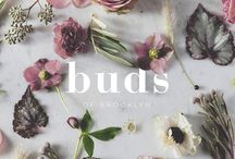 Buds of Brooklyn / Buds of Brooklyn is flower design company based in Brooklyn, New York. They offer hand-delivered custom designed bouquets for all occasions. Image resources from tumblr.   saxoncampbell.com info@saxoncampbell.com