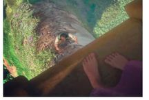 Disney. / Mr Disney's magical world