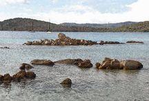 isola di Caprera - Sardegna
