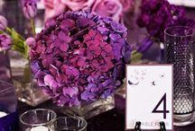 Morado/Purple (Wedding decor)