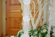 Wedding Ideas / by Debbie Ast