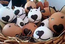 vajíčka bulici