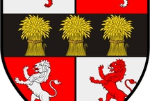 Coats of Arms / by Maggie Ceodraiocht