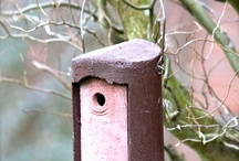 Original Schwegler Vogel- und Naturschutzprodukte