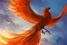 ● Phoenix