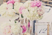λουλουδια κηπος