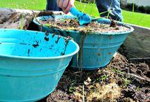 modder dag /mud day