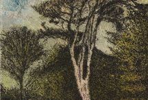 Forests and trees / Fine art print, etchings, photography and more, with a theme of trees of forests, all available from SO Fine Art Editions, Dublin.