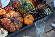 Harvest Gatherings