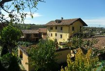 Langhe Properties / The staff and technicians at Langhe Real Estate will accompany you during every stage of the purchase of your country home in the Langhe.