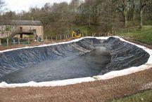 Pools / Dams