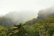 Nature's Beauty / Favorite Nature Photos