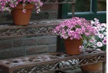 Saksılar ve Çiçeklikler / iç dış ortam saksıları ve çiçeklikler