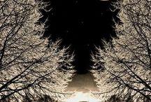 Nattbilder