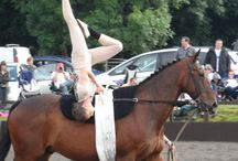 vaulting equestrian
