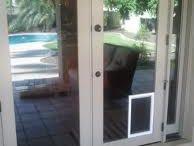 dog doors2