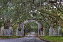 Live Love Savannah For The Holidays / Savannah at its best! Lot's of great decorating ideas for the holidays.
