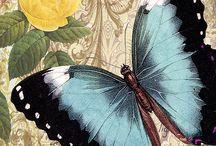 Винтаж с бабочками