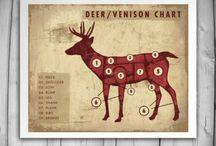 Deer Theater