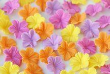 Fondant flowers / Fondant