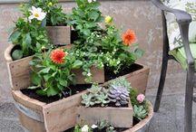 Gardening things :)