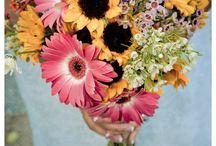Fall Wedding Dreams / by Cameran Hickey