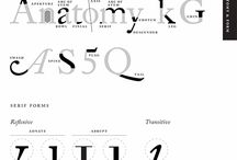 Anatomy / History of Type / by Ivanete Blanco